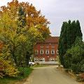 Herbst 2010 bei Tangendorf/ Toppenstedt, Foto: skb/30