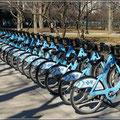 Fahrräder gibt es überall zu leihen