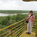 Blick auf die Mangroven