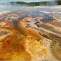Bunte Quellen im Yellowstone NP