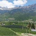 Apfelplantagen im Vinschgau