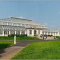 Es gibt mehrere beeindruckende Gewächshäuser in Kew Gardens