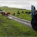 Einspurige Straßen mit Ausweichbuchten gibt es in Schottland häufig