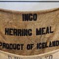 Der Name Ingo taucht in Island häufig auf ;)