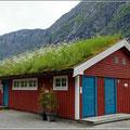Sanitärgebäude, natürlich mit grünem Dach