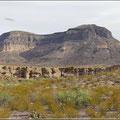 Landschaft an der Grenze zu Mexiko