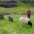 Unheimliche Begegnung auf dem Friedhof