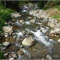Wanderung im Savegre-Tal