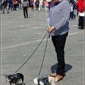 Und noch ein Fotoshooting für Hundemode