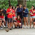 Ein Eichhörnchen läßt kurz die Smartphones ruhen