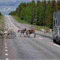 Die übliche Straßenblockade