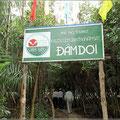 Ausflug zu den Mangroven