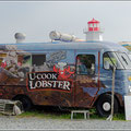 Lobster werden hier überall verfolgt
