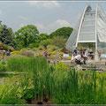 Unterwegs in Kew Gardens