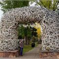 Eines der 4 Eingangstore zum kleinen Park in Jackson