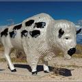 Kunst am Bison