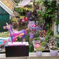 Garten in Hindeloopen