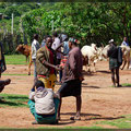 Besuch eines Viehmarkt in Key Afer