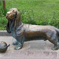 Spendenbox für Hunde