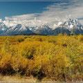 Landschaft im Grand Teton NP
