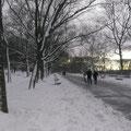 Am späten Nachmittag hat es aufgehört zu schneien, und ich unternahm in meiner Schneeausrüstung aus Russland einen Spaziergang im nahen Riverside-Park neben dem Hudson.