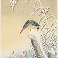 marie saiki papier peint peinture naturelle villefranche beaujolais lyon couleur brun