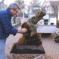 Scava scava scava che ci mettiamo il presepe