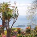 Blick vom Botanischen Garten auf den Hafen von Funchal