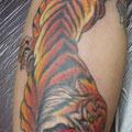 虎,WE-YAN