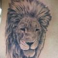 ライオン,DAICHI