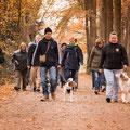 So entspannt kann ein Spaziergang mit 13 Hunden sein.