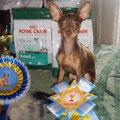 Кармен получила титул Чемпион РКФ
