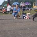 Конкурс пар 2 место Сафоново