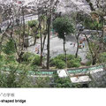 """珍しいループ状の坂道。坂の内側は公園になっています。道路が交差するところは陸橋になっていて、地元では『""""の""""の字橋』と呼んでいます。"""