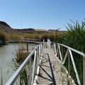 Rio Grande Nature Trail