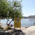 am Saguaro Lake