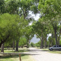 Castolon, Cottonwood Campground