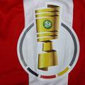 Trikot, Auswärtstrikot, Saison 2016/2017, matchworn, Nr. 13, Adam Bodzek, Fortuna Düsseldorf, DFB-Pokal, Puma, Otelo