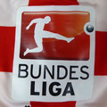 Trikot, Heimtrikot, Saison 2014/2015, Fortuna Düsseldorf, Nr. 11, matchworn, Axel Bellinghausen, Puma, ACTV, Sonderpatch, Otelo