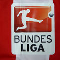 Trikot, Heimtrikot, Saison 2015/2016, Fortuna Düsseldorf, matchworn, Nr. 9, Mike van Duinen, Puma, Otelo, Wir helfen