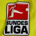 Trikot, Ausweichtrikot, Sambatrikot, Saison 2009/2010, Fortuna Düsseldorf, matchworn, Nr. 9, Ranisav Jovanovic, Puma, Stadtsparkasse Düsseldorf