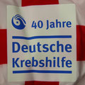 Trikot, Heimtrikot, Saison 2014/2015, Fortuna Düsseldorf, matchprepared, Nr. 13, Adam Bodzek, Ärmel, Puma, Detail, Sonderpatch, Otelo