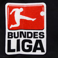 Trikot, Auswärtstrikot, Saison 2009/2010, Fortuna Düsseldorf, matchworn, Nr. 30, Olivier Caillas, Puma, Stadtsparkasse Düsseldorf