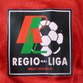 Trikot, Heimtrikot, Saison 1999/2000, Fortuna Düsseldorf, matchworn, Nr. 16, Kemal Halat, Umbro, Henkel