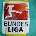 Trikot, Torwarttrikot, Saison 2015/2016, Fortuna Düsseldorf, matchprepared, Nr. 38, Tim Wiesner, Puma, Otelo