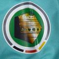 Trikot, Ausweichtrikot, Saison 2013/2014, Fortuna Düsseldorf, matchprepared, Nr. 8, Mathis Bolly, Puma, Otelo