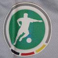 Trikot, Ausweichtrikot, Saison 2008/2009, Fortuna Düsseldorf, matchworn, Nr. 6, Jens Langeneke, Puma, Stadtsparkasse Düsseldorf