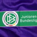 Trikot, Torwarttrikot, Saison 2016/2017, Fortuna Düsseldorf, Jugend, U17, Juniorenbundesliga, matchworn, Jonas Dieseler, Puma, Toyo Tires