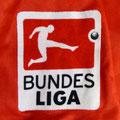 Trikot, Heimtrikot, Saison 2011/2012, Fortuna Düsseldorf, matchworn, Nr. 11,  Maximiliam Beister, Puma, Bauhaus