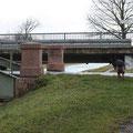 Woher kennt Genna den Weg? Zielsicher steuert sie die Brücke an! :-)